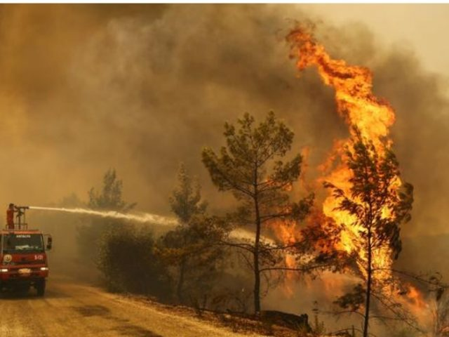 Ahval: Wildfire arsonist in Turkey alleged member of ruling alliance youth